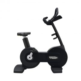 Rotoped Technogym Excite bike
