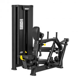 Stroj na posilnenie chrbtových svalov Master Sport
